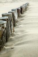 Wellenbrecher am Strand von Breskens